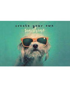 Moneyguard create your own sunshine
